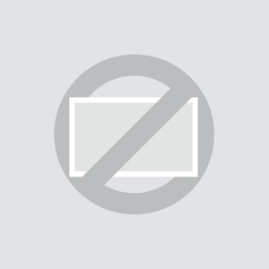 Écran 17pouces (4:3) - Moniteur